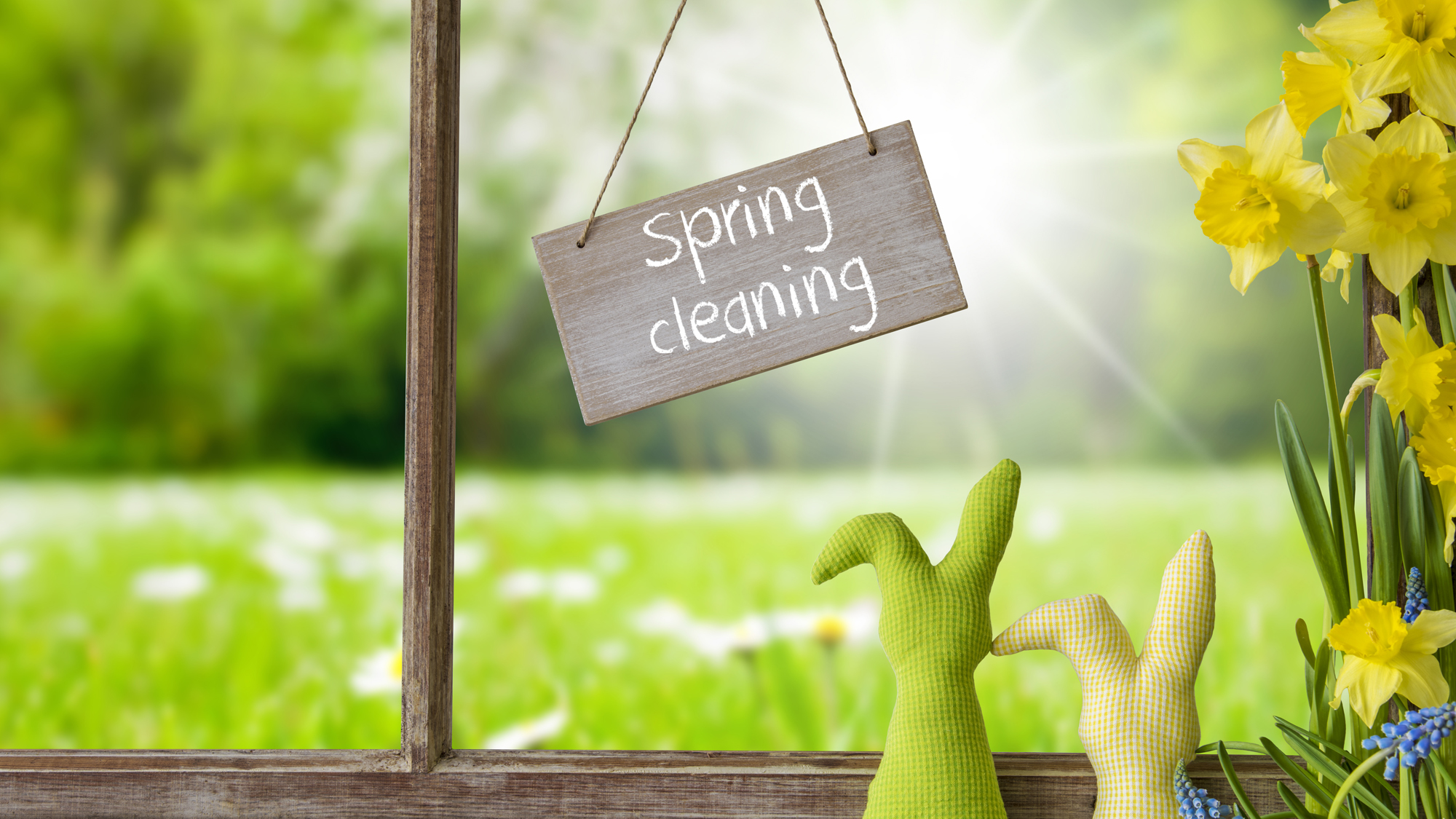 Sustainable Spring Cleaning Tips