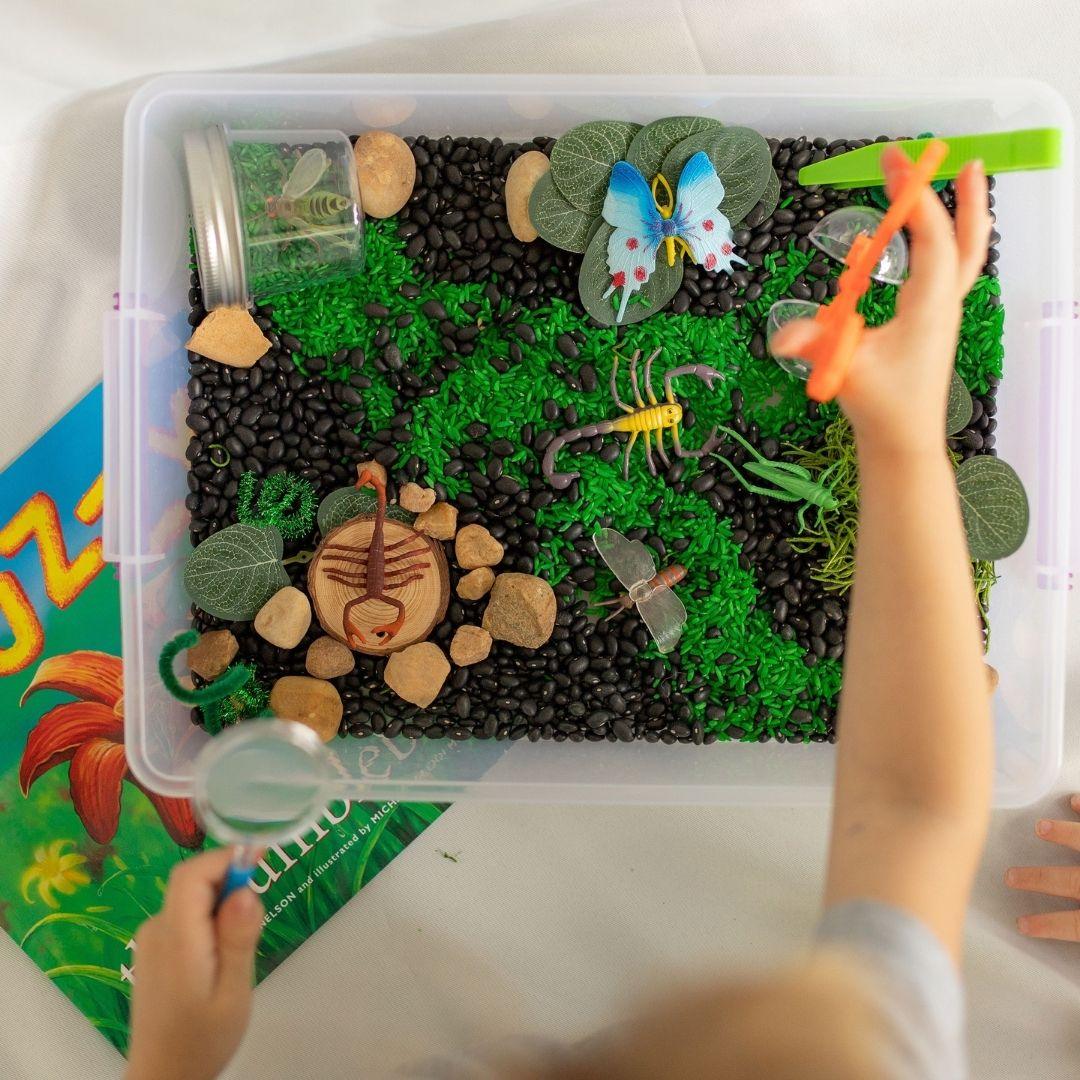 20+ Ways to Play with Your Insect Sensory Kit
