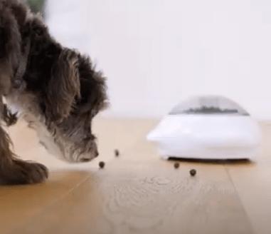 Trixie Snack Popper Dog Enrichment Toy