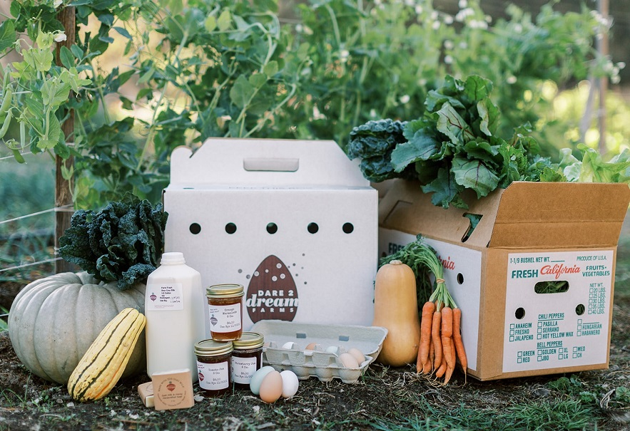 Explained: CSA versus Farm-Share, and how it supports you and your local community