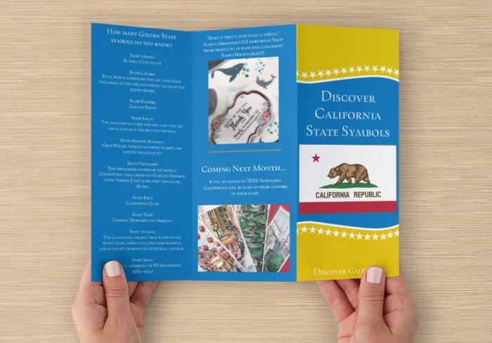 What's Inside - California State Symbols