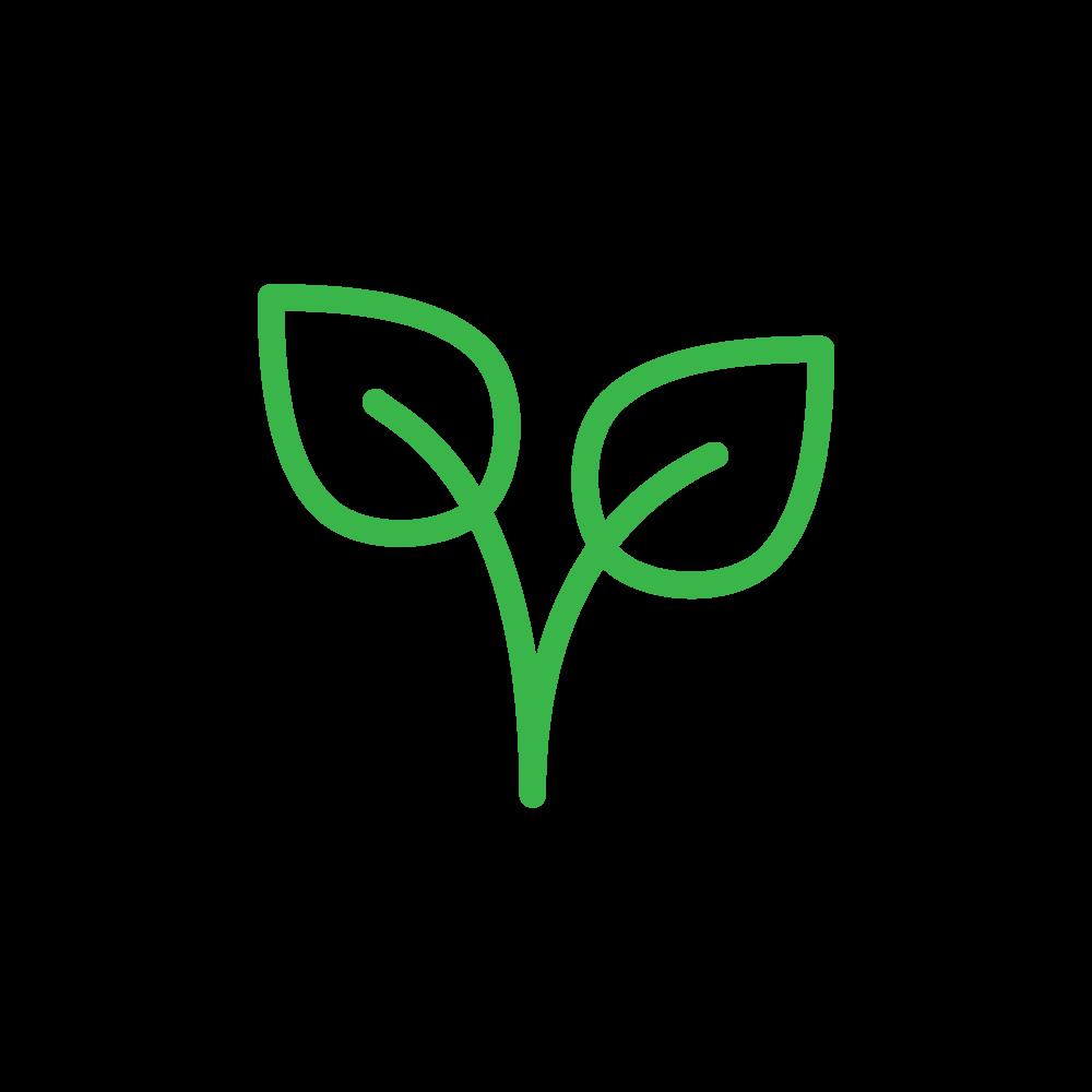 Plant-based symbol