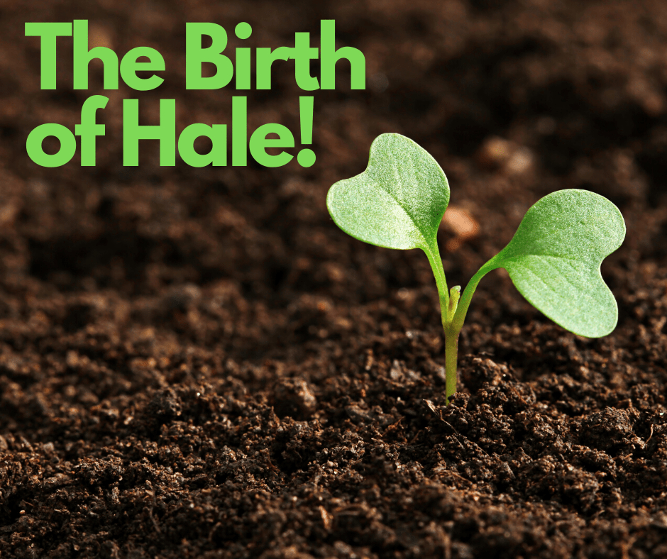 The Birth of Hale!