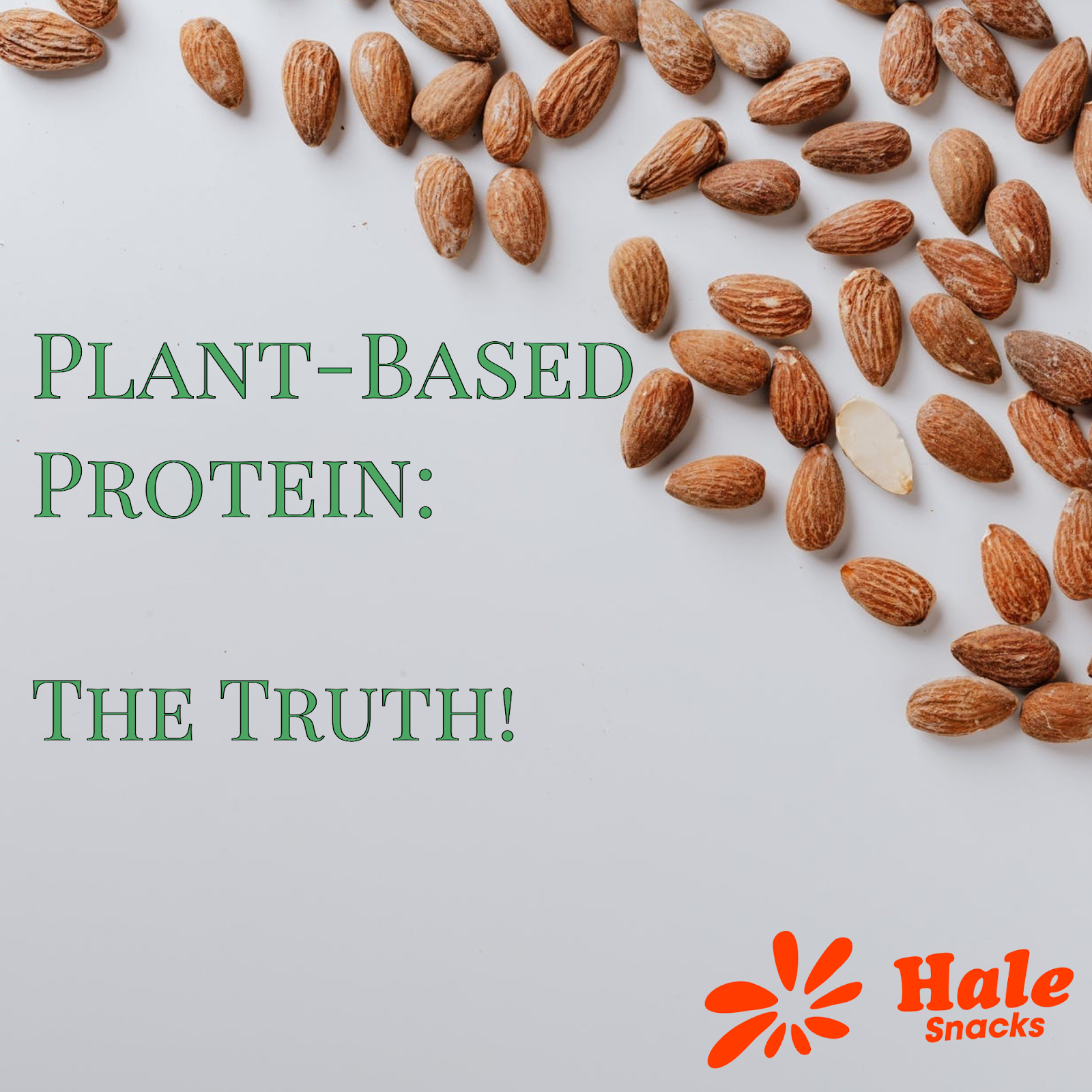 The Benefits of Plant Based Protein!