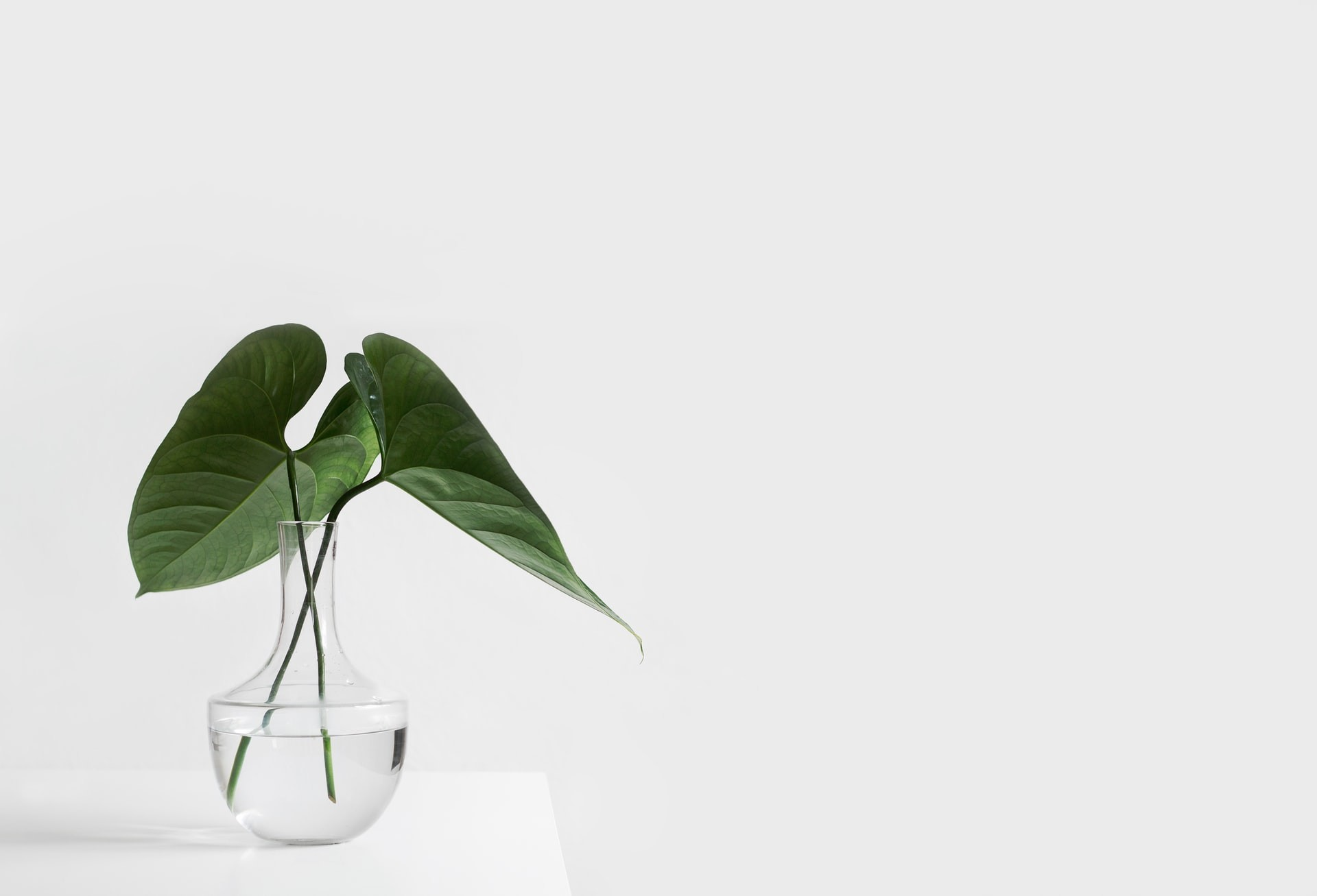 Why Minimalism is the key to ethical consumption