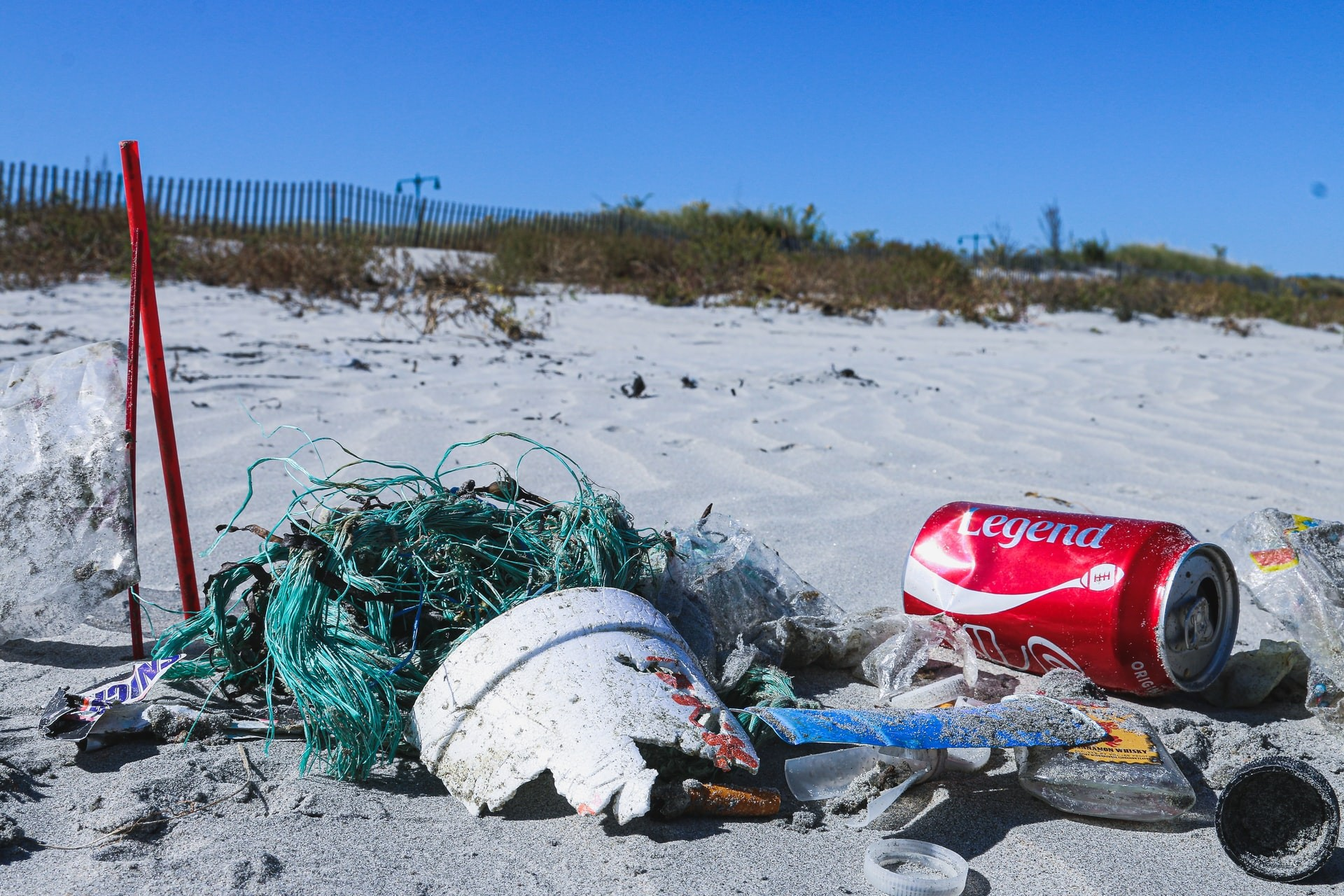Micro Plastics and the threat they pose