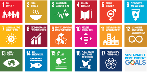 The UN Global Sustainability Goals