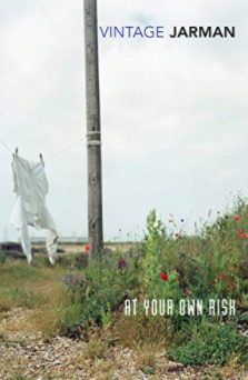 Book cover of At Your Own Risk by Derek Jarman