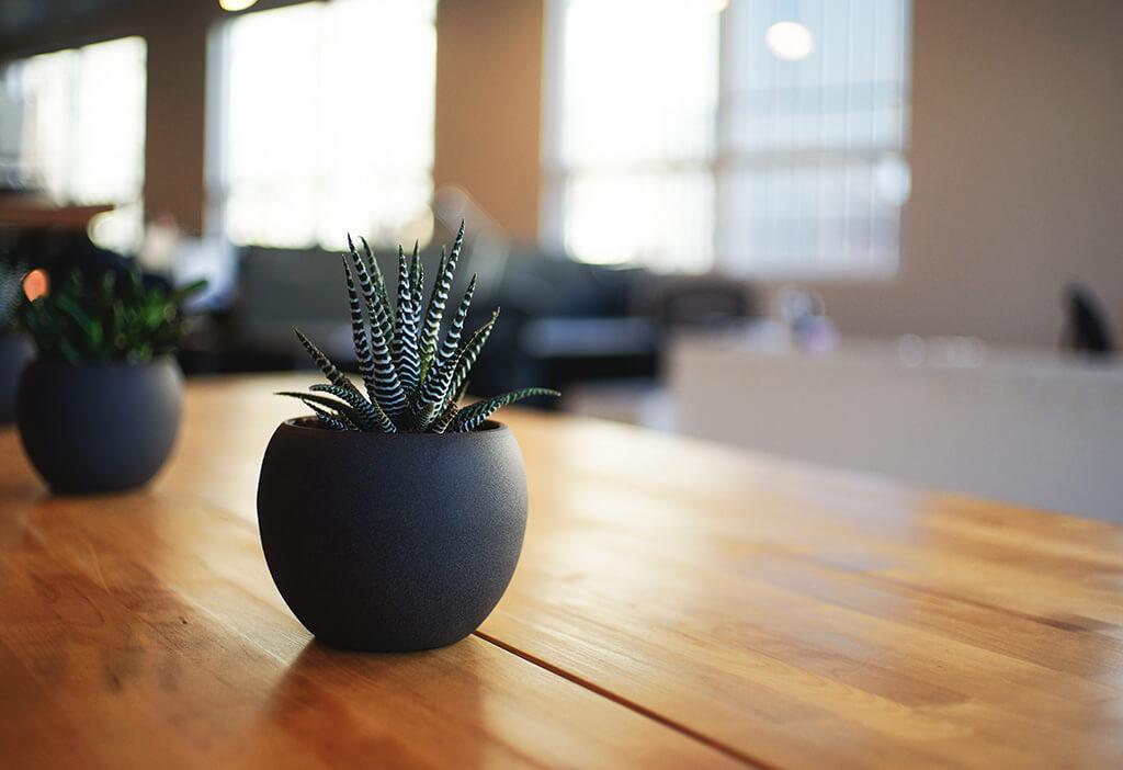 Creative Design & Contemporary Art Office Design